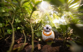 Картинка jungle, robot, BB-8, drone, Star Wars, kawaii, cute, Star Wars: The Force Awakens, Episode VII, ...