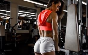 Обои Фитнес, спортзал, тренажер, спортивный стиль, фигура, Valentina