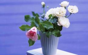 Картинка цветы, розы, букет, ваза