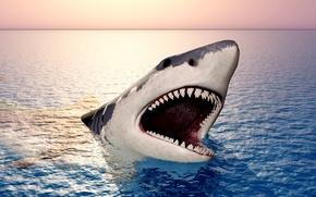 Обои море, челюсти, акула, зубы, пасть, небо, горизонт