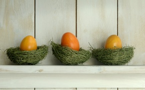 Картинка яйца, пасха, полка, гнёзда