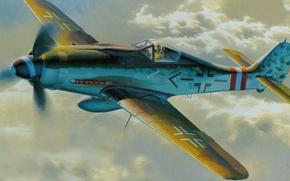 Картинка aircraft, war, airplane, aviation, dogfight, fw 190. german fighter