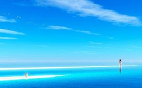 Картинка море, небо, вода, облака, птицы, камни, океан, Девушка