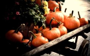 Картинка Pumpkins, autumn, orange, fall, cart