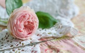 Картинка цветок, стиль, роза, бутон, крючок, вязание