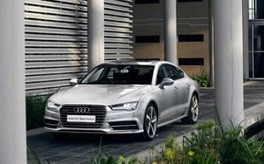 Картинка 2015, quattro, ZA-spec, S line, TDI, ауди, Audi, Sportback