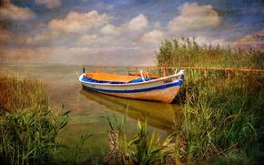 Картинка вода, природа, лодка, растение, Испания, холст, Валенсия, Albufera Natural Park