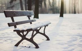 Картинка wood, winter, snow, seat, bench, shadows, sunlight, wooland
