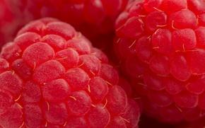 Картинка малина, ягода, красная, вкусно