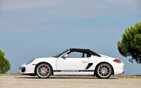 Обои Porsche, 2010, Boxster, Spyder