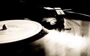 Картинка пластинка, макро, винил, граммофон, музыка