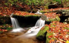 Обои вода, осень, Камни, ручей, листья