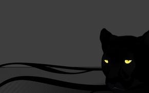 Обои кошка, серый, глаза, пантера