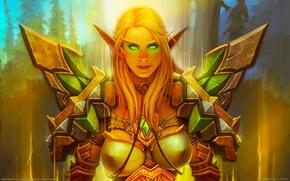 Картинка доспехи, зеленые глаза, паладин, world of warcraft, blood elf, blizzard entertainment, кровавая эльфийка, paladin