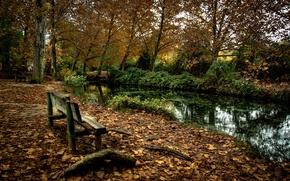 Картинка осень, парк, река, скамья