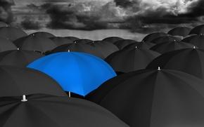 Картинка black, umbrella, blue, many