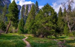Картинка горы, водопад, трава, деревья, Национальный парк Йосемити, Yosemite National Park, поляна, тропинка, зелень, скалы, Калифорния, ...