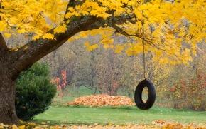 Картинка осень, листья, колесо