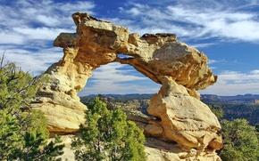 Картинка небо, облака, деревья, скалы, арка, США, штат Юта, песчаник, парадная лестница-Эскаланте, Kissing Dragons, поцелуй дракона