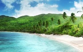 Картинка песок, море, тропики, пальмы, ветер, берег