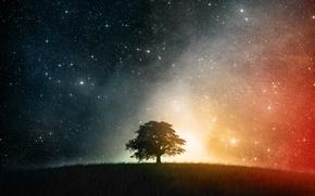 Картинка звезды, ночь, Дерево, холм