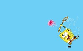 Обои спанч боб, губка боб, квадратные штаны, squarepants, spongebob, медуза