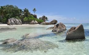 Картинка песок, море, тропики, камни, пальмы, берег, кусты, голубая водичка