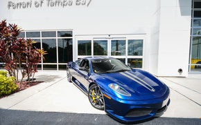Картинка F430, Ferrari, Blue, Scuderia