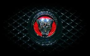 Картинка Jaguar, Машина, Решетка, Ягуар, Эмблема, Логотип, Радиатор