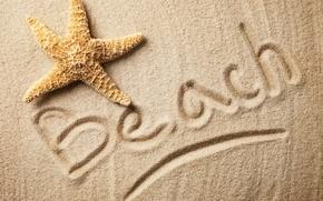 Обои sand, starfish, beach, текстура, песок