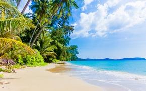 Картинка paradise, берег, beach, blue, sea, пляж, море, sand, песок, shore, волны, summer