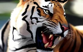 Картинка тигр, морда, оскал, арт, ярость