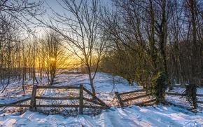 Картинка зима, солнце, снег, деревья, закат, забор