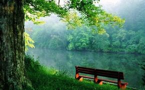 Обои скамейка, река, спокойствие