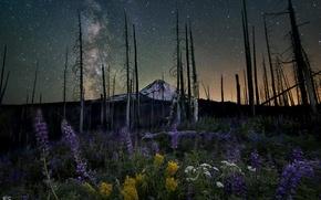 Картинка небо, звезды, ночь, природа, гора