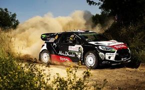 Картинка Трава, Пыль, Citroen, DS3, WRC, Rally, Ралли, Mads Ostberg