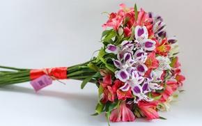 Картинка букет, разноцветная, flowers, альстрёмерия