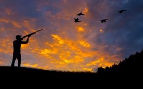 Картинка лес, природа, утки, силуэт, стрельба, охота, ружье, винтовка, rifle, wallpaper., прицеливание, beautiful background, красивый фон, …