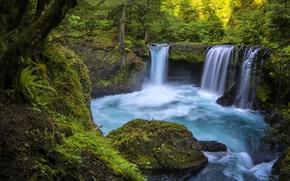 Картинка лес, река, водопад, Washington, штат Вашингтон, Columbia River Gorge, ущелье реки Колумбия, Little White Salmon ...