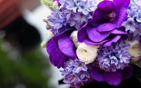 Картинка белый, сиреневый, Букет, орхидея, гиацинт, ранункулюс, ванда