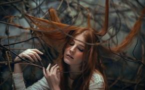Картинка девушка, ветки, волосы, веснушки