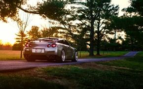Картинка Nissan, GT-R, Grass, Sun, Back, R35, Summer, Road, Rear