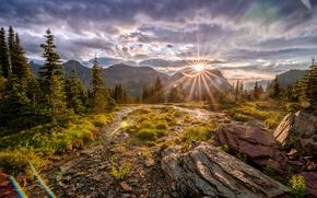 Картинка небо, солнце, облака, лучи, деревья, горы, блики, камни, скалы, США, Glacier National Park