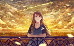 Картинка девушка, облака, забор, лепестки, арт, перила, bounin