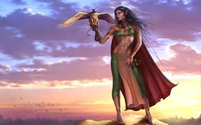 Обои небо, девушка, облака, закат, птицы, скала, оружие, эльф, меч, фэнтези, арт, вершина, girl, sword, rock, ...