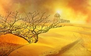 Обои песок, солнце, пустыня, куст, храм, песчанная буря