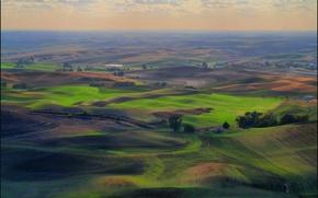 Картинка трава, холмы, поля, луг, сельская местность, зелёная, пашня, Palouse, Washington State, Don Briggs, Landscape overview …