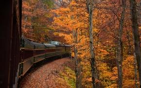 Картинка осень, лес, деревья, поезд, вагон