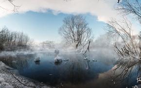 Картинка зима, природа, туман, озеро