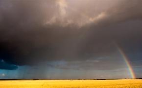 Обои радуга, небо, поле, облака